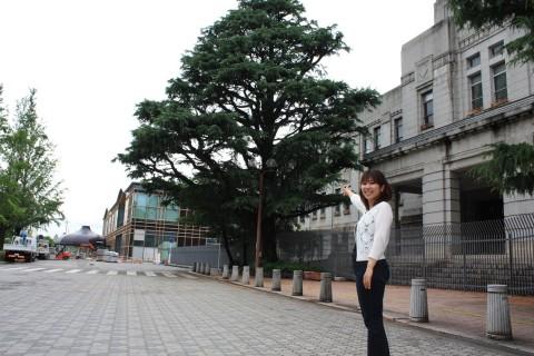中川メディア3-2